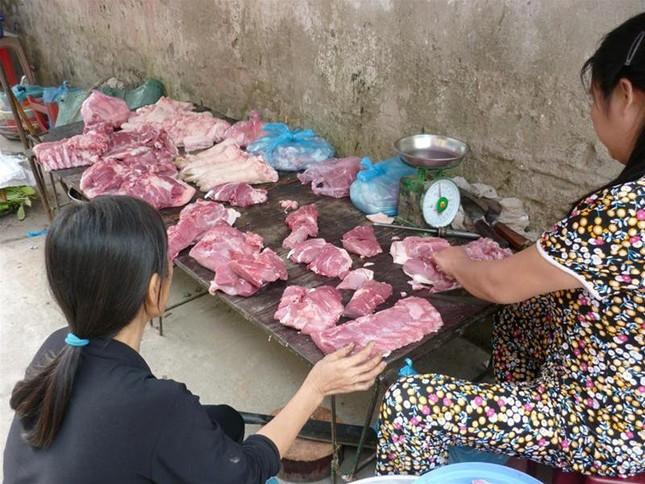 Xử lý nghiêm những trường hợp bán chạy lợn ốm, chết ảnh 1