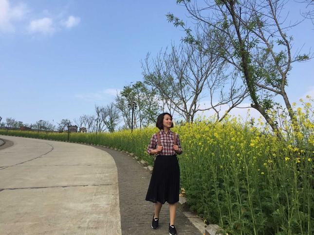 Mải mê 'sống ảo' với thảm hoa cải vàng đẹp mê hồn ở Sun World Fansipan ảnh 3