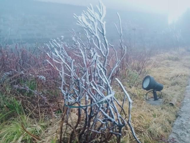 Nhiệt độ giảm sâu, băng tuyết phủ trắng Fansipan như trời Âu ảnh 7
