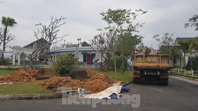 Bên trong dự án Vườn Vua hơn 1.400 tỷ vướng hàng loạt sai phạm ở Phú Thọ ảnh 14