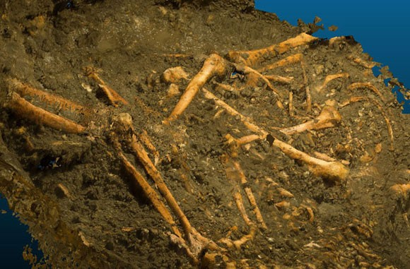 Những bí ẩn chôn trong cổ mộ ảnh 9