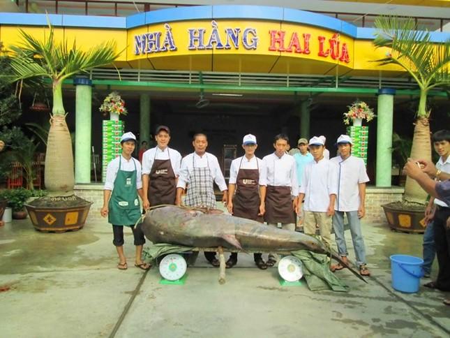 Săn cá khủng giá hàng chục triệu đồng ở miền Tây ảnh 3