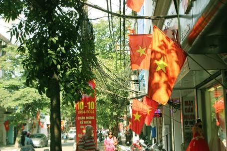 Hà Nội 'khoác áo mới' mừng 60 năm giải phóng ảnh 2