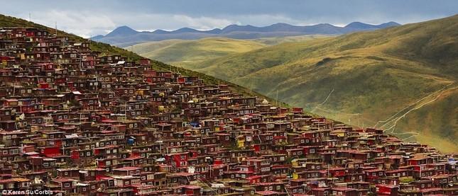 Nhìn gần học viện Phật giáo lớn nhất thế giới ảnh 12