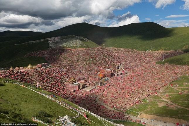 Nhìn gần học viện Phật giáo lớn nhất thế giới ảnh 1