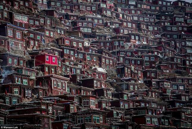 Nhìn gần học viện Phật giáo lớn nhất thế giới ảnh 2