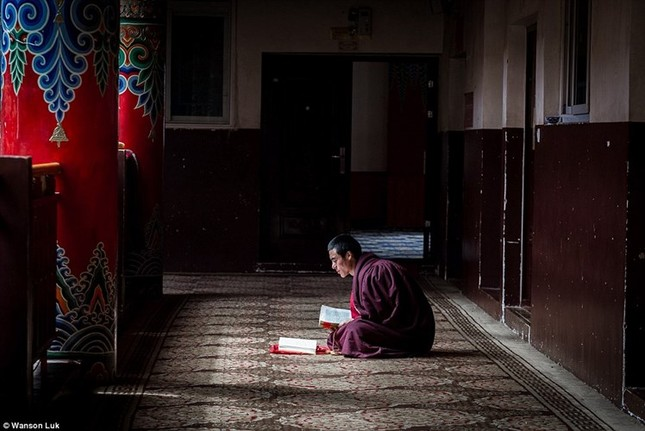 Nhìn gần học viện Phật giáo lớn nhất thế giới ảnh 3