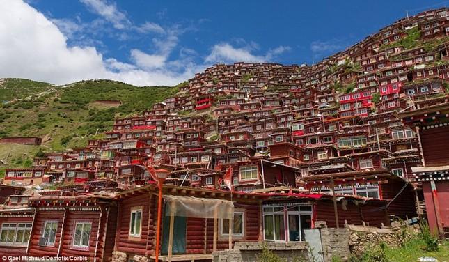 Nhìn gần học viện Phật giáo lớn nhất thế giới ảnh 5