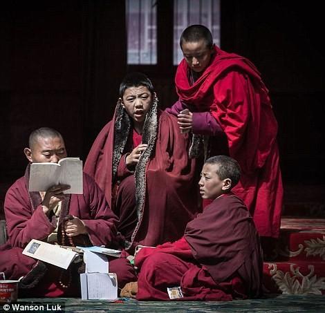 Nhìn gần học viện Phật giáo lớn nhất thế giới ảnh 7