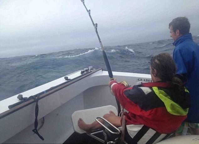"""Câu được thủy quái """"khủng"""" nặng 411,6kg, dài 3m ảnh 4"""