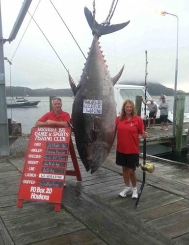 """Câu được thủy quái """"khủng"""" nặng 411,6kg, dài 3m ảnh 6"""