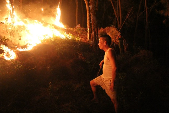 Rừng thông cháy rừng rực trong đêm ở Nghệ An ảnh 9