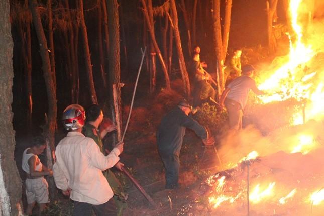 Rừng thông cháy rừng rực trong đêm ở Nghệ An ảnh 4