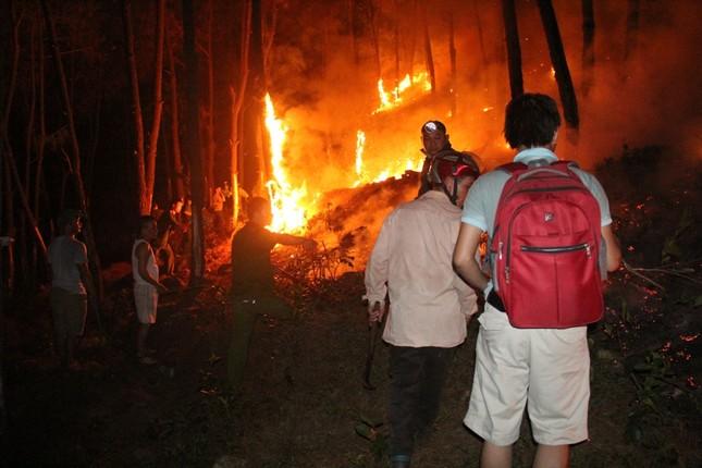 Rừng thông cháy rừng rực trong đêm ở Nghệ An ảnh 5