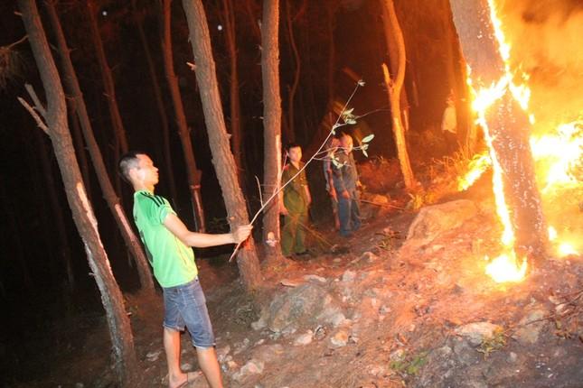 Rừng thông cháy rừng rực trong đêm ở Nghệ An ảnh 1