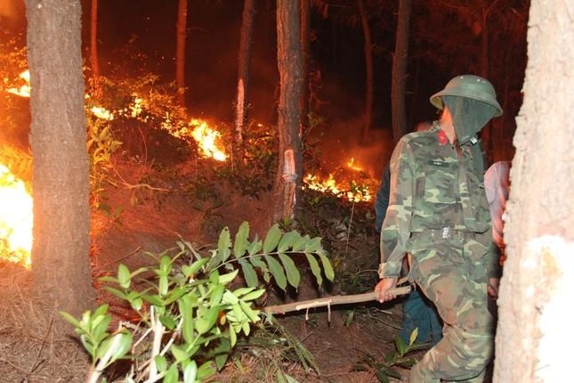 Rừng thông cháy rừng rực trong đêm ở Nghệ An ảnh 2