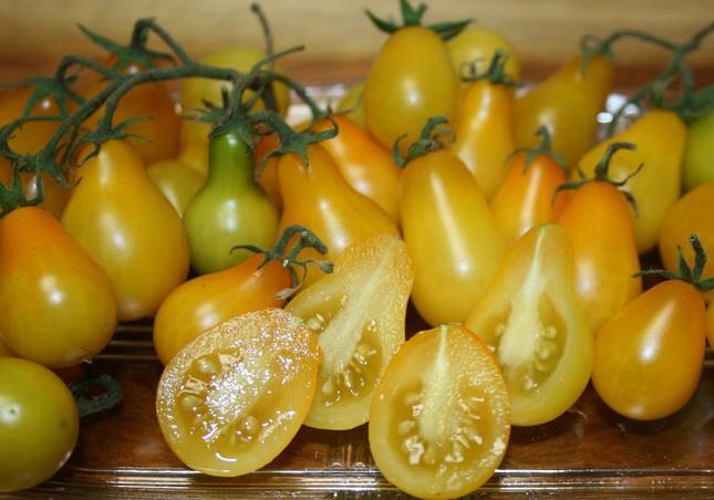 Cà chua bi hình trái lê hớp hồn bà nội trợ ảnh 4
