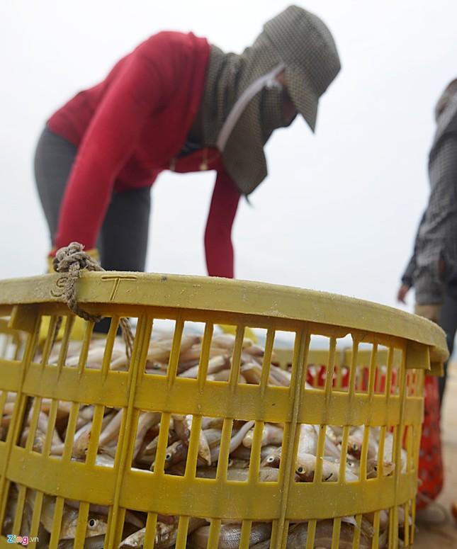 Ngư dân Hà Tĩnh ra khơi đánh cá ảnh 3