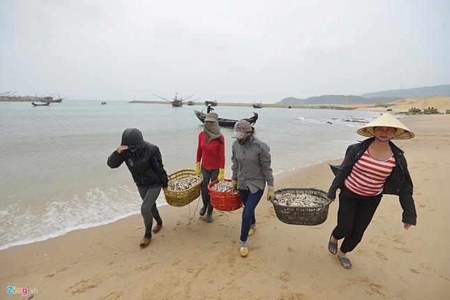 Ngư dân Hà Tĩnh ra khơi đánh cá ảnh 4