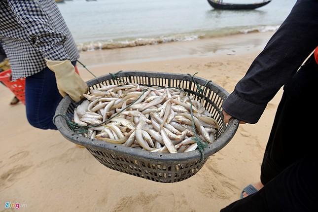Ngư dân Hà Tĩnh ra khơi đánh cá ảnh 5