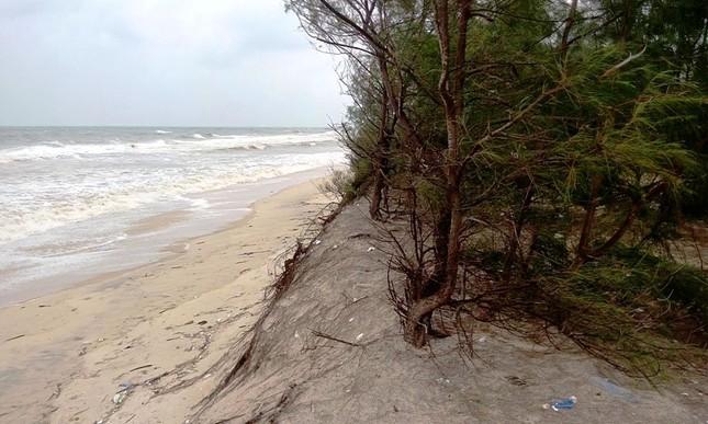 Bão số 7 cận kề, bờ sông, bờ biển TT-Huế sạt lở hàng loạt ảnh 3