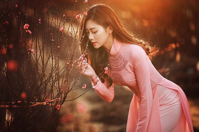 Dạo vườn đào Tết với thiếu nữ Hà Nội ảnh 11