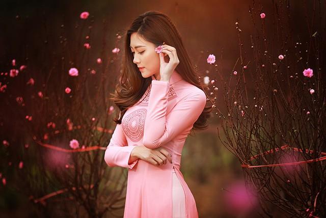 Dạo vườn đào Tết với thiếu nữ Hà Nội ảnh 12
