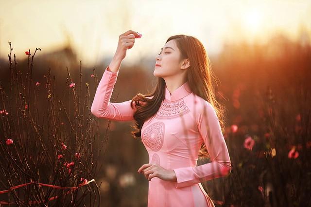 Dạo vườn đào Tết với thiếu nữ Hà Nội ảnh 6