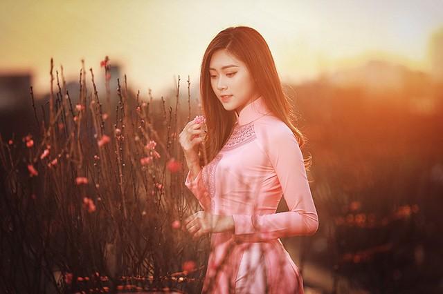 Dạo vườn đào Tết với thiếu nữ Hà Nội ảnh 10