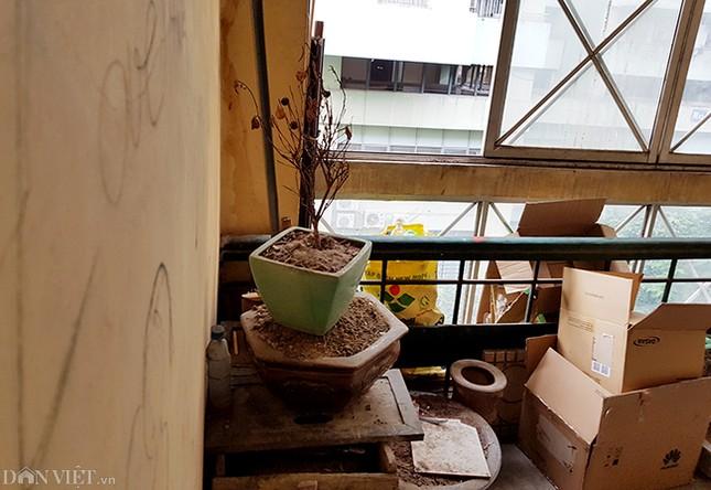 Nhếch nhác khu tái định cư ở Hà Nội: Chuồng gà, 'chuồng cọp' đua mọc ảnh 17