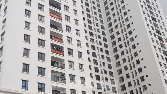Vicem xin bán tháp nghìn tỷ 'bỏ hoang', 'ông lớn' siêu dự án ở Sa Pa lộ diện ảnh 3