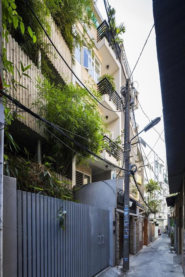 'Nhà tre' như rừng cây trong hẻm Sài Gòn, vừa tắm vừa nghe chim hót ảnh 1