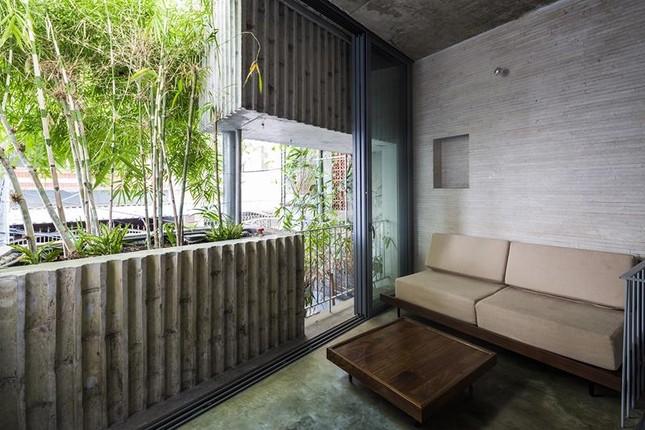 'Nhà tre' như rừng cây trong hẻm Sài Gòn, vừa tắm vừa nghe chim hót ảnh 4