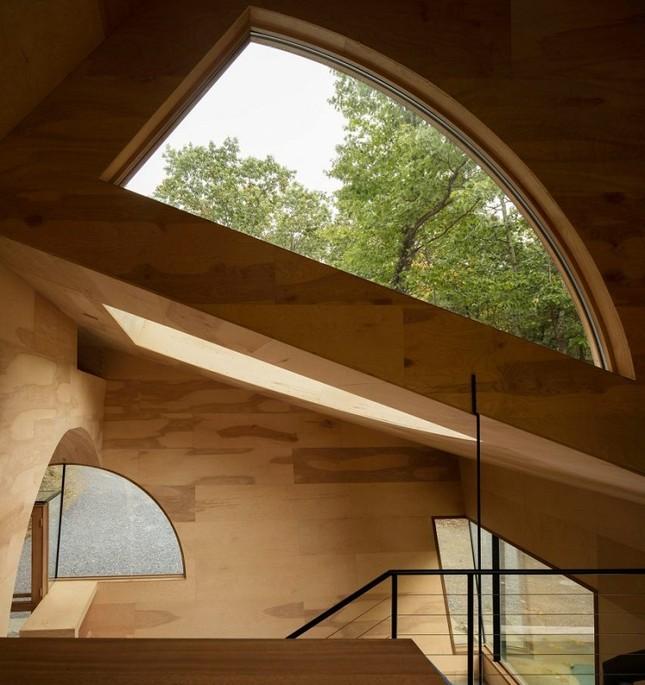 Nhà gỗ hình thang giữa rừng với cửa độc đáo đẹp hút mắt ảnh 3