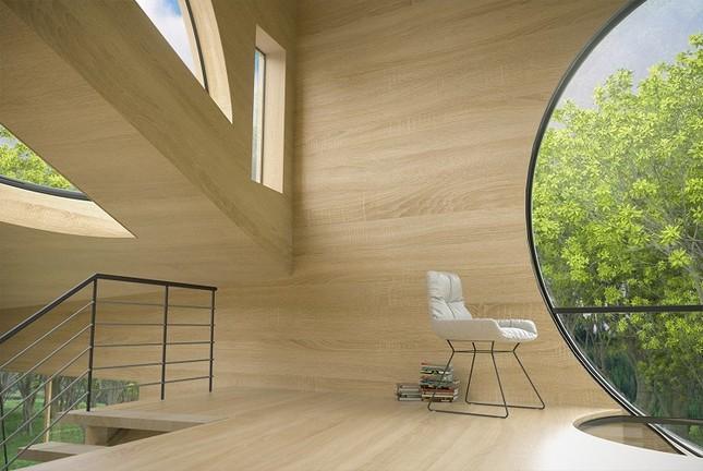 Nhà gỗ hình thang giữa rừng với cửa độc đáo đẹp hút mắt ảnh 4