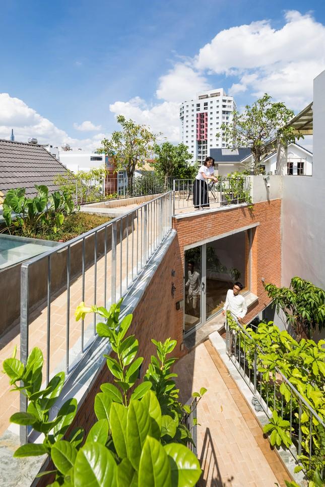 Nhà gạch nung rợp bóng cây xanh lọt đề cử kiến trúc đẹp nhất thế giới ảnh 6