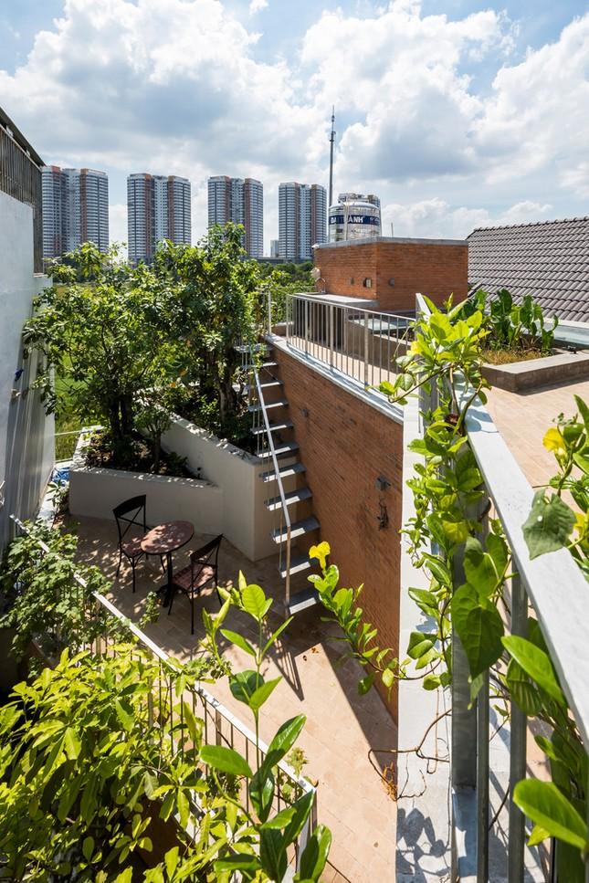 Nhà gạch nung rợp bóng cây xanh lọt đề cử kiến trúc đẹp nhất thế giới ảnh 7