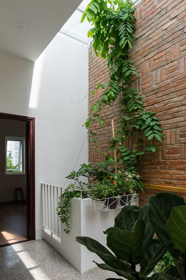 Vợ chồng Việt sửa nhà cấp 4 cũ thành nơi ở đẹp đến mức báo Mỹ cũng phải khen ảnh 13