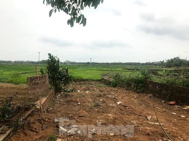 Sau sốt nóng, 'chợ bất động sản' ở Thạch Thất bị chính quyền 'giải tán' ảnh 8