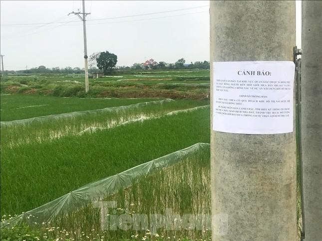 Sau sốt nóng, 'chợ bất động sản' ở Thạch Thất bị chính quyền 'giải tán' ảnh 2