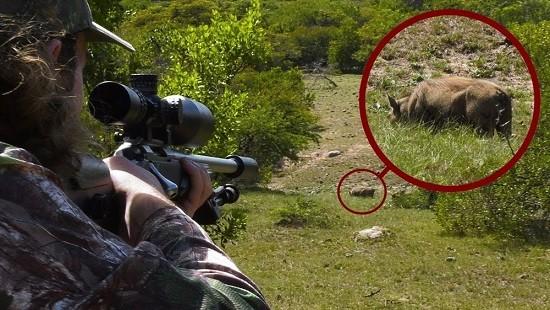 Bố dùng súng bắn chết con trai vì tưởng là lợn rừng ảnh 1