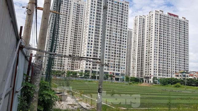 Hà Nội truy thu 35 tỷ đồng doanh nghiệp sử dụng đất sai mục đích ảnh 2