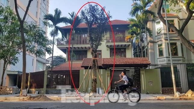 Cận cảnh biệt thự đô thị mẫu Hà Nội 'đua nhau' thay cây xanh, lát vỉa hè sai quy hoạch ảnh 4