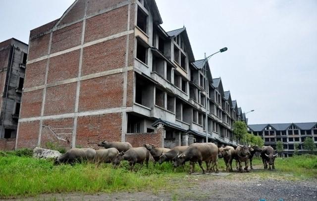 Bí thư Hà Nội: Không để 'bong bóng', 'thành phố ma' trong bất động sản ảnh 1