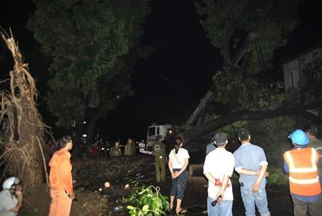 Trắng đêm khắc phục sự cố mưa dông ở Hà Nội ảnh 1