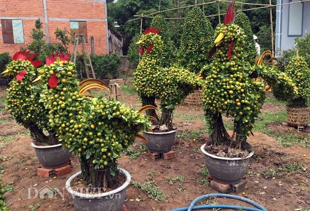"""Tết Đinh Dậu """"sốt"""" với những nông sản in, khắc hình gà ảnh 2"""