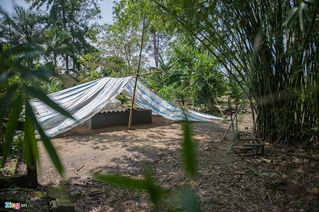 Anh hùng Nguyễn Văn Bảy an nghỉ dưới bóng khóm tre vườn nhà ảnh 9