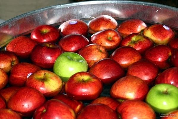 Ý nghĩa của quả táo trong dịp Halloween?