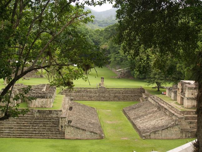 Giải mã bí ẩn loạt động vật chôn cùng cô gái trong mộ cổ Maya ảnh 1
