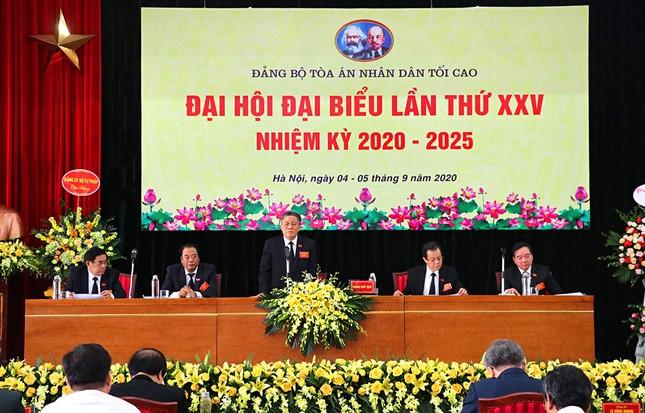 Ông Lê Hồng Quang làm Bí thư Đảng bộ Tòa án nhân dân tối cao ảnh 1